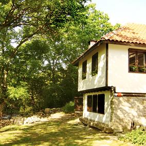 House Kalina